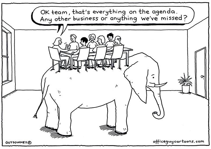 The_elephant