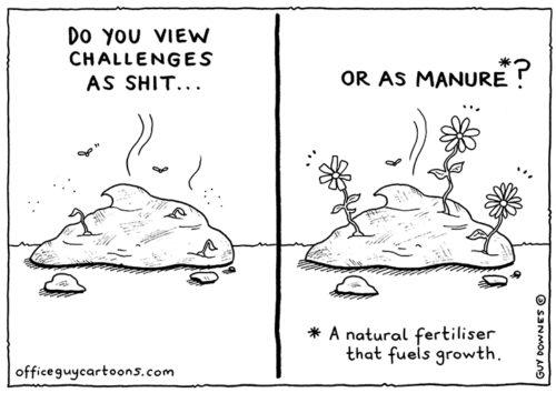 Shit vs Manure